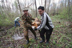 Волонтёры Западного рубежа за благоустройством смешанного захоронения Первой мировой войны у деревни Можейки Поставского района-5