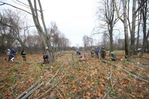 Волонтёры за благоустройством немецкого захоронения Первой мировой войны в деревне Дворчаны Поставского района-13