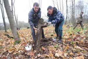 Волонтёры за благоустройством немецкого захоронения Первой мировой войны в деревне Дворчаны Поставского района-3