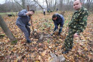 Волонтёры за благоустройством немецкого захоронения Первой мировой войны в деревне Дворчаны Поставского района