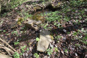 Раскопанная могила на кладбище Первой мировой войны у деревни Можейки Поставского района-3