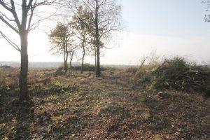 Немецкое кладбище Первой мировой войны в деревне Норковичи Поставского района-5