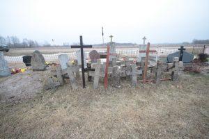 Немецкое кладбище в Большой Ольсе-2