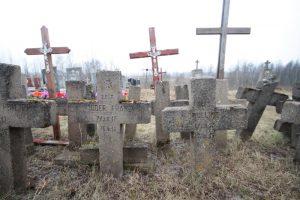 Немецкое кладбище в Большой Ольсе-3