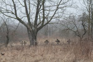 Немецкое кладбище Первой мировой войны в деревне Ярево Поставского района-6