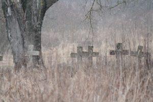 Немецкое кладбище Первой мировой войны в деревне Ярево Поставского района-5