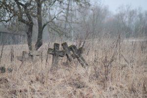 Немецкое кладбище Первой мировой войны в деревне Ярево Поставского района-4