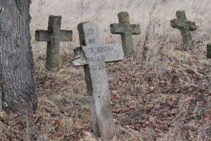 Немецкое кладбище Первой мировой войны в деревне Ярево Поставского района-3