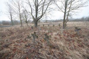 Немецкое кладбище Первой мировой войны в деревне Ярево Поставского района-2