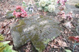 Немецкие могилы на гражданском кладбище в деревне Оцковичи Поставского района-1