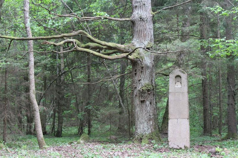 Немецкое кладбище Первой мировой войны около деревни Филипповцы Поставского района-4