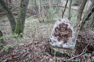 Смешанное захоронение Первой мировой войны около деревни Петровщина Поставского района-3