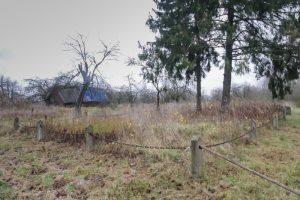 Русское кладбище Первой мировой войны в деревне Боровки Поставского района-2