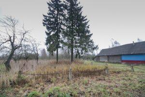 Русское кладбище Первой мировой войны в деревне Боровки Поставского района-1