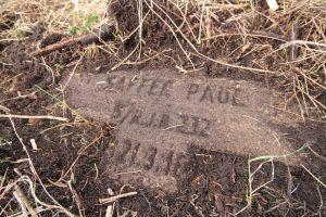Немецкое кладбище Первой мировой войны около деревни Микулишки Поставского района-2