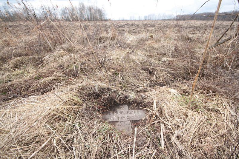 Немецкое кладбище Первой мировой войны около деревни Микулишки Поставского района-1