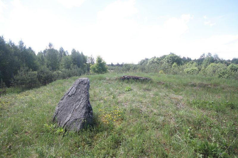 Смешанное захоронение Первой мировой войны в деревне Дубровщина Поставского района-1