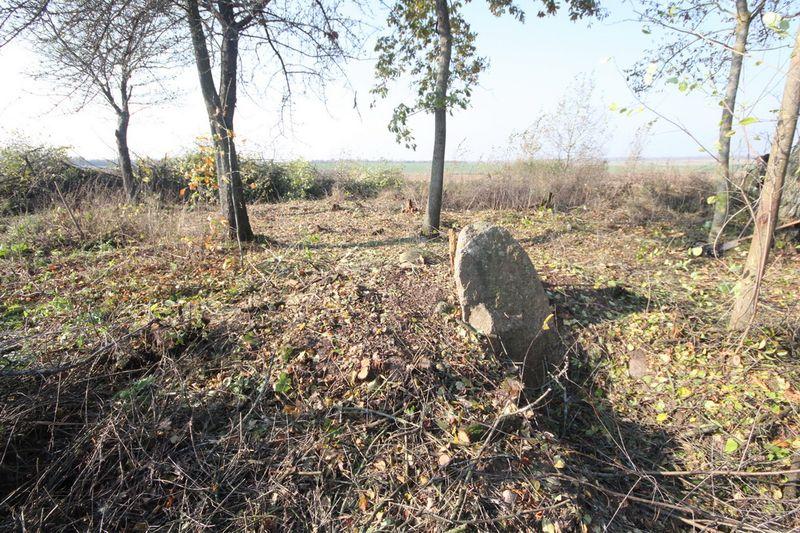 Немецкое кладбище Первой мировой войны в деревне Норковичи Поставского района-1