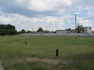 Немецкое кладбище Первой мировой войны в аг. Камаи Поставского района-1