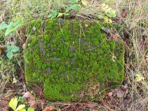 Смешанное захоронение Первой мировой войны в аг. Лынтупы Поставского района-1