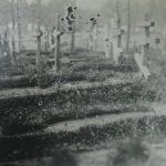 Могила Слепака Залемана Давидовича на кладбище у ф. Крестинаполь. Можно предположить, что он был иудеем, так как на могиле не установлен крест, а есть только табличка с надписью. РГВИА.