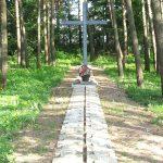 Центральный крест и алея из надгробных плит. 2011 г.