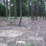 Поваленные вертикальные кресты на русском участке кладбища. 2009 г.
